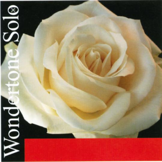PIRASTRO Wondertone Violín Cuerda-Mi Plata bola