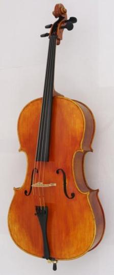 Arc Verona Student Violoncello