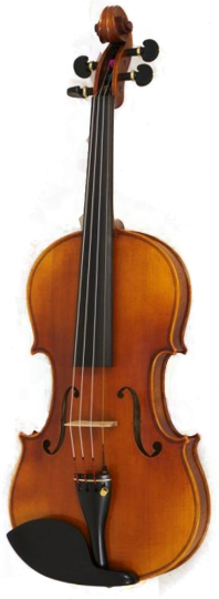Konzertvioline 4/4 ARC VERONA Maestro