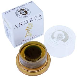 Andrea Sanctus Kolophonium, Viola