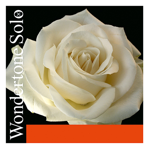 PIRASTRO Wondertone Violinsaite E Silber mit Schlinge, mittel