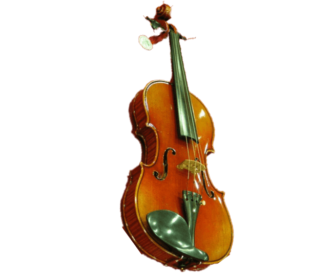 Ernst-Heinrich Roth Violine, Master Line