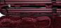 Carbonoptik schwarz / rot